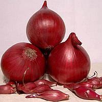Лук севок Ред Кармен тыканка раннеспелы урожайный сладкий слабоострый салатный сорт Голландия, фото 1