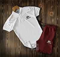 Мужская футболка поло лакост (lacoste)