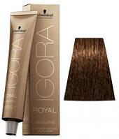 8-60 Краска для седых волос Schwarzkopf Prof Igora Royal Absolutes - Светлый русый шоколадный натуральный