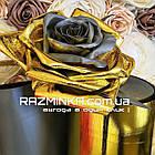 Золотой Изолон ППЭ 2мм с черным основанием (15 кв.м), фото 4