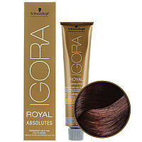 5-80 Краска для седых волос Schwarzkopf Prof Igora Royal Absolutes -Светло коричневый красный натуральный 60мл