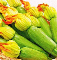 Кабачок Карамболь F1 100 н (Проф насіння)