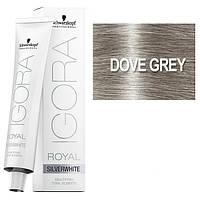 Dove Grey - Краска для волос Schwarzkopf Professional Igora Royal Absolutes Silverwhite - Сталь - 60мл