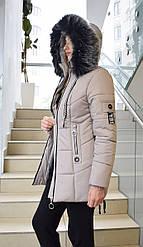 Куртка женская Dinasti Berrys М153 капучино 42