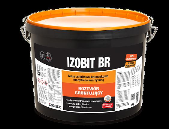 Мастика праймер для огрунтовывания поверхностей Izolex IZOBIT BR 18 кг, фото 2