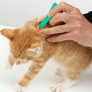 Антипаразитарные средства для животных