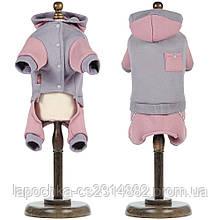 Костюм Pet Fashion Рикки для собак, серый M