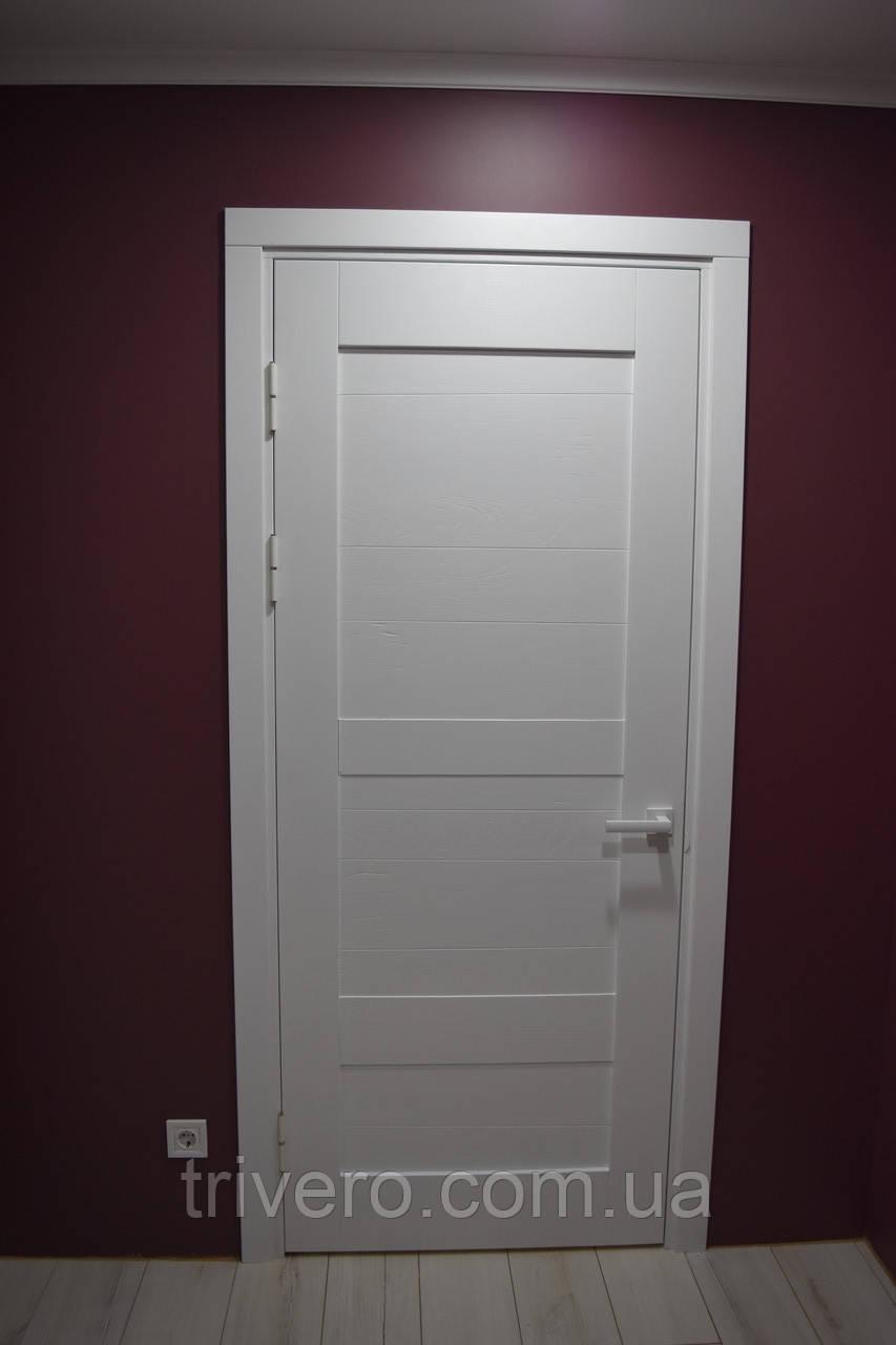 Білі двері в стилі амбарном
