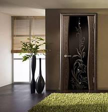 Міжкімнатні двері зі склом