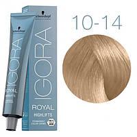10-14 Краска для волос Schwarzkopf Professional Igora Royal Highlifts - Ультра блондин сандре бежевый - 60 мл
