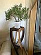 """Подставка для цветов из натурального дерева """"Адель"""" от производителя, фото 4"""