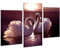 Модульная картина на холсте 96х70см Лебеди