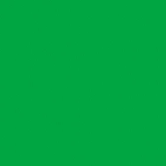 Нетканый фотофон, полипропилен (винил) фон 3 х 6 (м) - зеленый