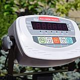 Товарные весы для мешков BDU600-0607 M Б, фото 3