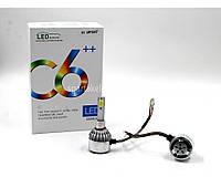 Комплект LED ламп C6 H1 (50)