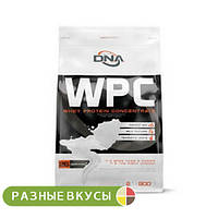 Протеин DNA Supps (Olimp) WPC 900 г