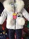 Детский зимний комбинезон на девочку Киса Размеры 80, фото 5