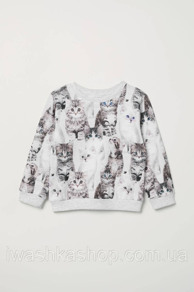 Легкий серый свитшот с котятами на девочек 2 - 4 лет, р. 98 - 104, H&M