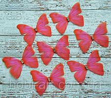 Метелик двохшаровий шифоновий 4,7х3,6см малиновий (ВА-072)