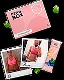 Detox Box – похудение и очищение организма от токсинов, фото 2