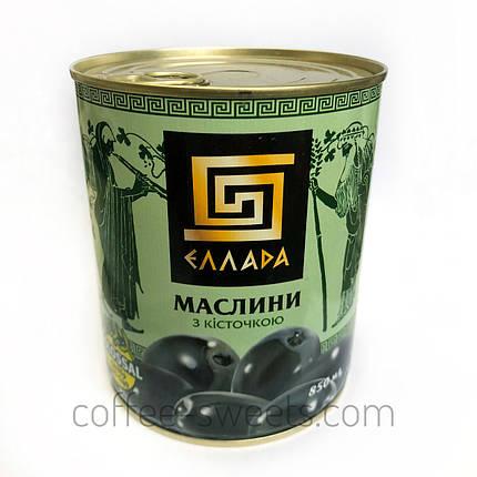 "Маслины с косточкой ""Эллада"" (colossal калибр 121-140) 850гр, фото 2"