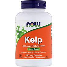 """Келп NOW Foods """"Kelp"""" поддержка щитовидной железы, 325 мкг (250 капсул)"""