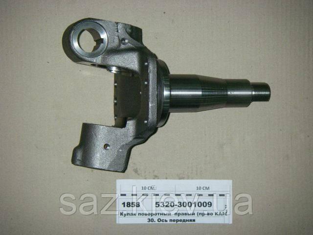 Кулак поворотный правый (пр-во КАМАЗ), 5320-3001009