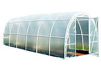 Теплица фолиевая туннельная 6х2,2, фото 1