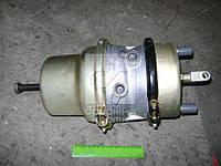Камера тормозная с пружинным энергоакк (в сборе,тип 20/20) (покупн. КамАЗ)