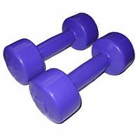 Гантели виниловые для фитнеса 2 шт по 2кг