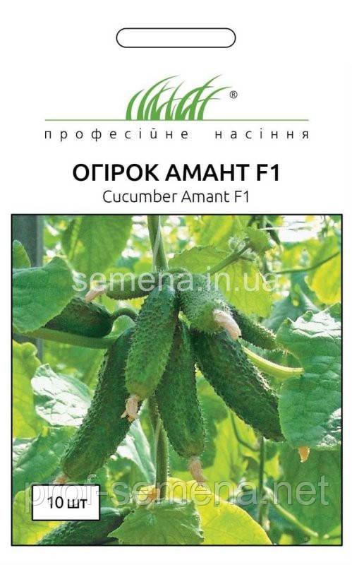 Огірок Амант F1  10 шт.