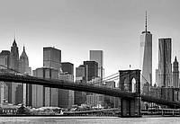 """Фотообои: """"Нью-Йорк"""", 366х254 см, 8 частей"""