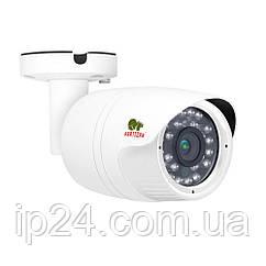2.0MP AHD камера COD-454HM FullHD 5.3