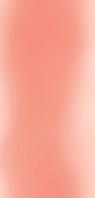 Панель ПВХ Гілка орхідея рожева фон (0,25*6,00*0,008)