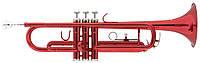 Труба  CARVELLI CTP-115RD + ЧЕХОЛ, фото 1