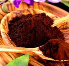 Какао порошок алкализированный 20-22 % Нидерланды