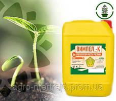 Препарат для обробки насіння ВИМПЕЛ - ДО