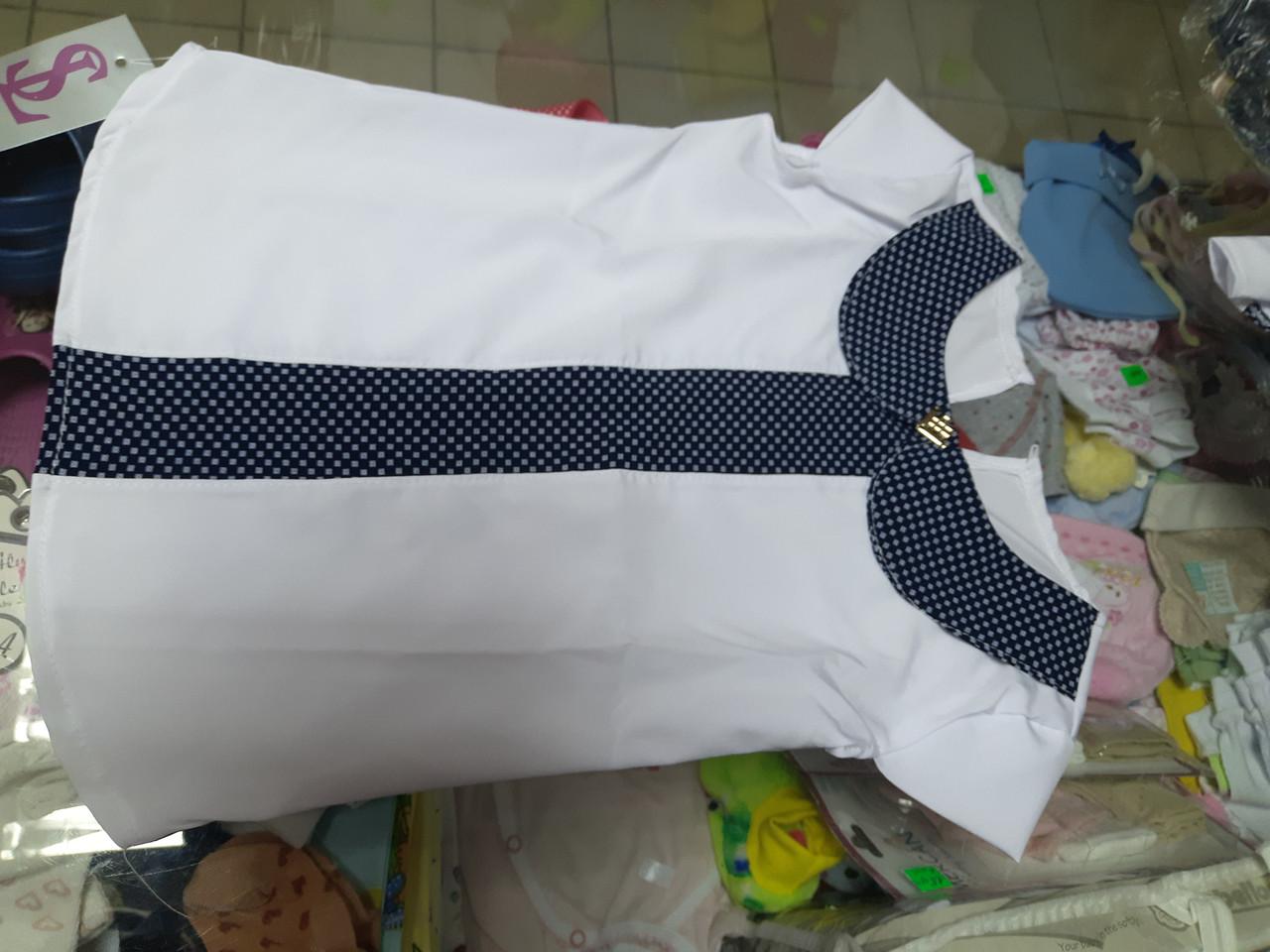 Блуза детская Школьная с коротким рукавом р.116 - 128