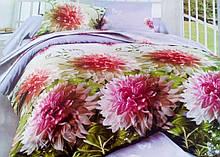 Комплект постельного белья от украинского производителя Polycotton Полуторный T-90943