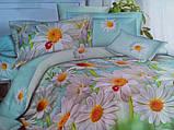 Комплект постельного белья от украинского производителя Polycotton Полуторный T-90959, фото 5