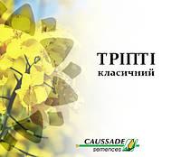 Рапс озимый ТРИПТИ КС  КОССАД СЕМАНС, фото 1