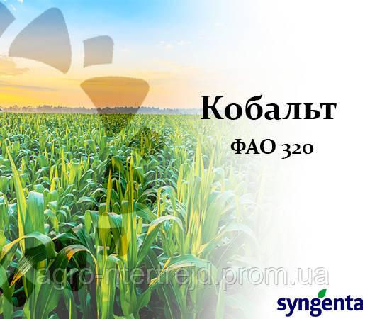 Кукуруза НК Кобальт (ФАО 320) Сингента