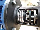 Насос для термомасла (перегретого масла, термо масла) ДНТ-М 40-25-150, фото 4