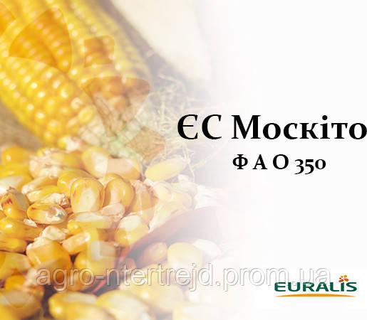 Кукуруза ЕС МОСКИТО (ФАО 350)
