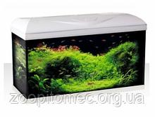 Акваріумний набір Croci (Кроучи) Riviera 80 LED на 95 л, 60*32*42 см