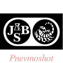 Куля JSB