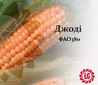 Семена кукурузы Джоди / JODIE ФАО 380 LIMAGRAIN (ЛИМАГРЕЙН), фото 1
