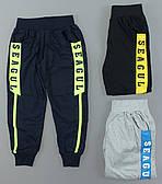 Спортивні штани для хлопчиків Seagull оптом, 116-146 рр. Артикул: CSQ52287