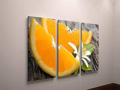 Фото картина модульная фотокартина на холсте для кухни фрукты апельсин цитрус холст