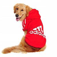 Толстовка для собак «Adidog», красный
